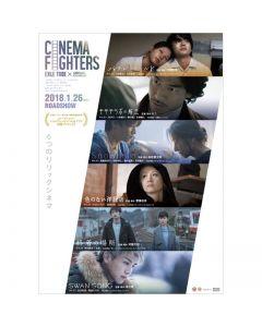 Cinema Fighters DVD normal version
