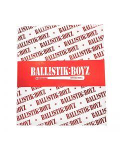 Izakaya EXILE Sticker Folder BALLISTIK BOYZ